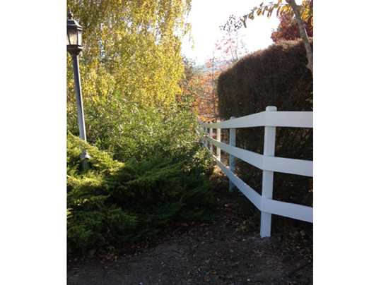 Emerald State Painting-Almaden Fence-1