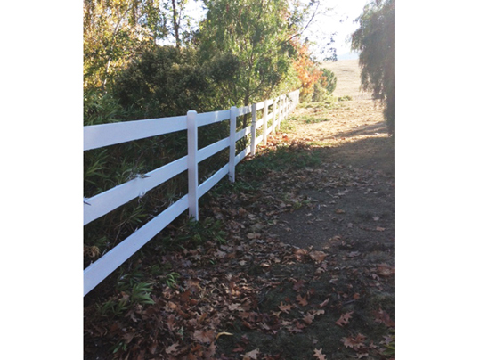 Emerald State Painting-Almaden Fence-3