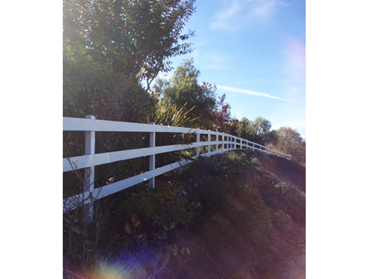 Emerald State Painting-Almaden Fence-4